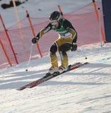 Branchement Australie de Craig de skieur de coupe du monde Images libres de droits