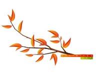 Branchement d'arbre illustration stock