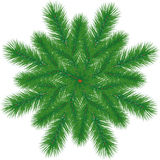 Branchement d'arbre de Noël Images libres de droits