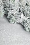 Branchement d'arbre de Noël image libre de droits