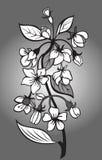 Branchement de fleur illustration libre de droits