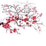 Branchement de Sakura illustration de vecteur