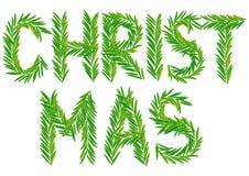 Branchement de sapin de Noël Photos stock