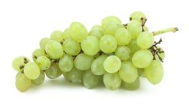 Branchement des raisins verts Images libres de droits