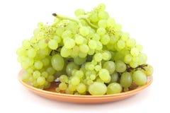Branchement des raisins verts d'une plaque Image libre de droits