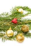 Branchement et décorations d'arbre de pin de Noël Photos libres de droits
