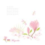 Branchement et libellule de magnolia Photographie stock libre de droits
