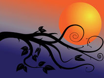 Branchement et lune illustration de vecteur