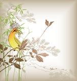 Branchement et oiseau d'arbre illustration libre de droits