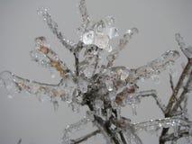 Branchement glacial Photo libre de droits