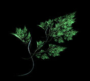 Branchement vert illustration de vecteur