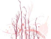 Branchements d'arbre stériles   Images stock