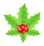 Branchements de baie de houx de décoration de Noël Photos libres de droits