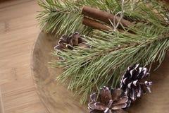 Branchements de pin avec des cônes Image stock