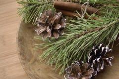 Branchements de pin avec des cônes Image libre de droits
