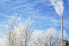 Branchements givrés par scène de l'hiver Images libres de droits