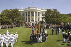 Branchements militaires Image stock