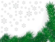 Branchements verts de sapin Image libre de droits