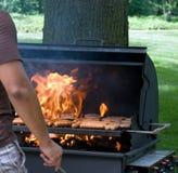 brancher de 2 flammes Image stock