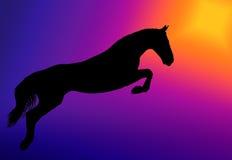 Brancher de cheval Images stock