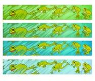 Brancher de grenouilles Image libre de droits