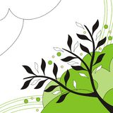 Branches Stock Images