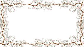 Branches And Almond Flowers Growing Into A Frame In Alpha Channel. Flowers Growing Into A Frame In Alpha Channel stock footage