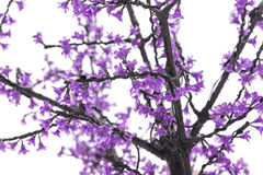 Branches of artificial blossoming tree Royalty Free Stock Photo