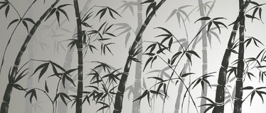 Branches of a bamboo Royalty Free Stock Photo