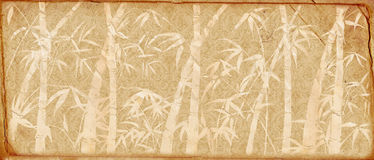 Branches of a bamboo on old paper. Retro. Stock Image