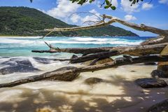 Branches and granite rocks at wild tropical beach,police bay,sey. Branches and big granite rocks at wild tropical beach,police bay, mahé, seychelles Stock Photography