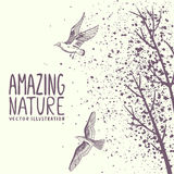 Branches and birds grunge Royalty Free Stock Photography