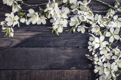 Branches blossoming almonds on a brown wooden surface. Empty space in the middle, wine tinting Royalty Free Stock Photography