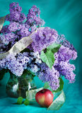 Branches of blossoming lilac and red apple Stock Photography