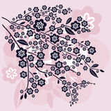 Branches and Cherry Blossoms Vector Illustration Stock Photos