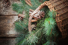 Branches of Blue Fir Tree, Cinnamon and Pine Cones Scattered from Rural Basket. Top view Stock Image