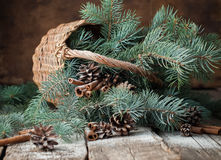 Branches of Blue Fir Tree in a Rustic Basket on Wooden Table Royalty Free Stock Image