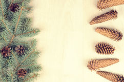 Branches of blue spruce and cones on a wooden background Stock Photo