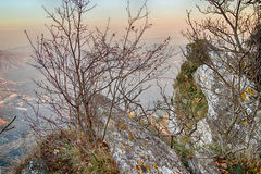 Branches on blurred hilly countryside Royalty Free Stock Image