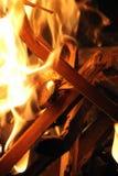 Branches brûlantes Photographie stock libre de droits