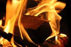 Branches brûlantes Photos libres de droits
