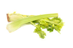 Branches of a celery with leaves. Lies on a table Stock Photos
