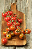 Branches of Cherry Tomatoes Royalty Free Stock Images