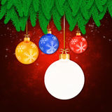 Branches of christmas tree  on abstract  background Royalty Free Stock Photography