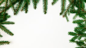 Branches of a Christmas tree border on one side on three sides on a white background stock photo