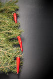 Branches of a Christmas tree decorated with chili peppers on a d Royalty Free Stock Photo