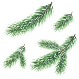 Branches of a Christmas tree. Green branches of a Christmas tree, set, isolated on white background Stock Photos