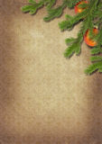 Branches of a Christmas tree on old lpaper. Retro. Stock Images