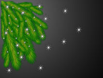 The branches of the Christmas tree. Stars and falling snowflakes Royalty Free Stock Image