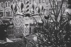 The branches of the Christmas tree in the town square royalty free stock images